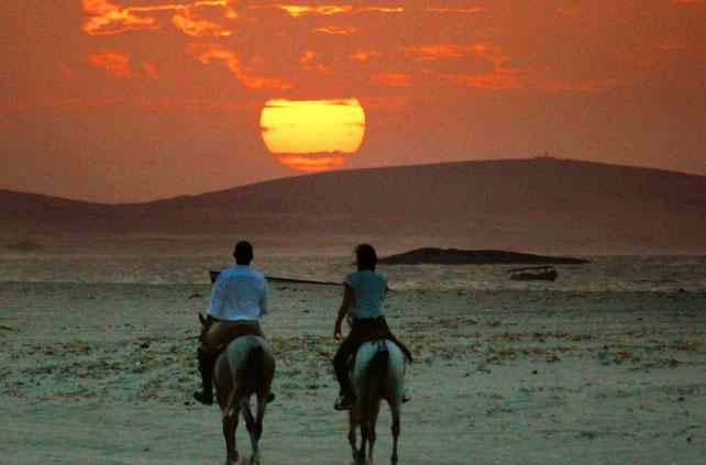 horseback riding at night in desert at mushrif park